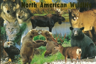 2xBook of 17 Postcards of North American wildlife ( Animals )