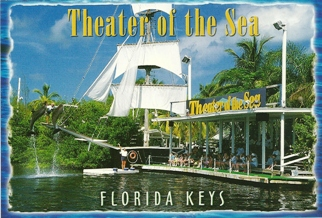 26x Postcard Theater of the Sea (With Recipe on Back).